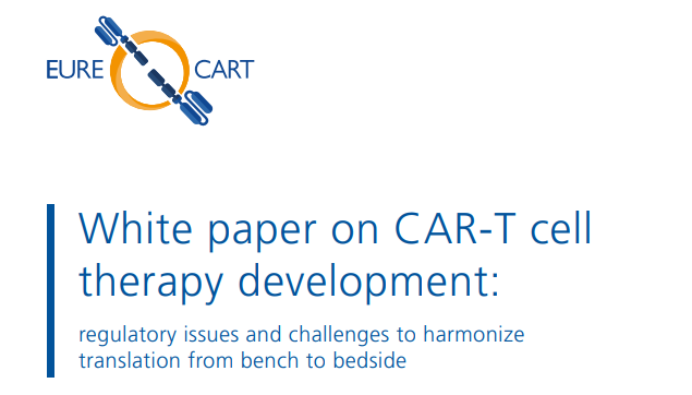 White Paper on CAR-T cell therapy development